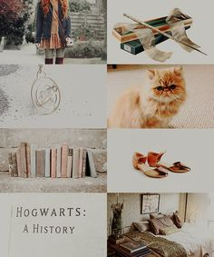 aesthetics, harry potter, and hermione granger image collage harry potter Image in Harry Potter⚡ collection by juwairiah Harry Potter Universal, Harry Potter Fandom, Hogwarts, Harry And Hermione Fanfiction, Wallpaper Harry Potter, Harry Potter Aesthetic, Harry Potter Collection, Fanart, Ravenclaw