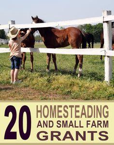 Homesteading Farm Grants