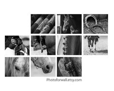 Horse Wall Decor Art Print Gallery Wall, set of 10 prints, black and white photography, large wall art girl room wall decor Gift For Her