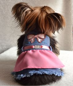 Dog Clothes With Harness Hole Cheap Dog Clothes, Large Dog Clothes, Cute Dog Clothes, Pet Fashion, Animal Fashion, Baby Dogs, Pet Dogs, Dog Christmas Clothes, Yorkie Clothes