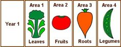 Simple charts for rotating crops in the vegetable garden.