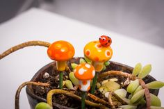 A personal favorite from my Etsy shop https://www.etsy.com/listing/222824064/fairy-garden-mushroom-set-container