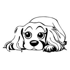Small Dogs Tips - Halloween Dogs Treats - Dogs Ideas Car - Dogs Toys To Buy - Dogs Bed Cabinet Puppy Tattoo, Cavalier King Charles Spaniel, Dog Anatomy, Dog House Bed, Dog Coloring Page, Cockerspaniel, Cocker Spaniel Dog, Dog Signs, Cartoon Dog