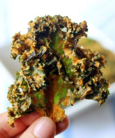 Cheesy Kale Chips | 15 Things You Can Make With Your Dehydrator | https://homemaderecipes.com/15-things-you-can-make-with-your-dehydrator-this-weekend/