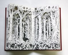 Tropical Forest Altered Book