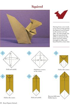 Easy Origami Animals - page 3 of 6 (Squirrel - 1 of 2)