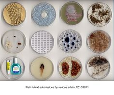 petri dish art - Google Search