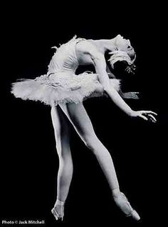 new york ballet. to watch my daughter em be a ballerina in the company at any ballet. Dance Like No One Is Watching, Just Dance, Ballet Tumblr, Dance Movement, Ballet Beautiful, Beautiful Swan, Beautiful Beautiful, Tiny Dancer, Dance Photos