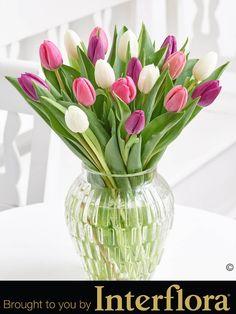 Pink Elegance Tulip Vase | Designer Flowers by Rodgers | 591 Wilbraham Road, Manchester