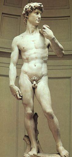 David de Michel-Ange Le Clergé de Santa Maria dei Fiori étanten possession d'un bloc de marbre de Carrare. Michel-Ange en fera surgir une sculpture d'un seul tenant (prouesse technique) son colossal David (1501-1504). Il est clairement inspiré du statuaire antique. Le David de Michel-Ange trônait à l'entrée du Palazzo Vecchio.