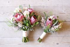 I love my natives.would like to pick flowers from my own garden King Protea Wedding Bouquets Flor Protea, Protea Bouquet, Protea Flower, Hand Bouquet, Small Wedding Bouquets, Small Bouquet, Wedding Flower Arrangements, Bride Bouquets, Ideas