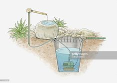 Stock Illustration : Cross section illustration of tsukubai oriental water garden created using natural materials