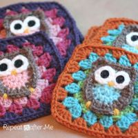 How-To: Crocheted Owl Granny Square broken link in pin - click below for instructions http://www.repeatcrafterme.com/2012/11/owl-granny-square-crochet-pattern.html