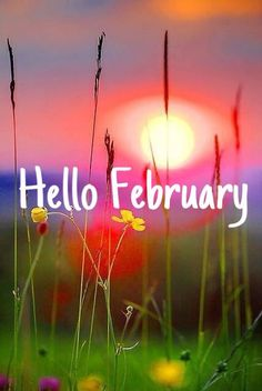 good day for : A new begin February Images, Hello February Quotes, Welcome February, Seasons Months, Months In A Year, Thanksgiving Leftovers, Thanksgiving Recipes, Thanksgiving Casserole, Valentines Gifts For Boyfriend