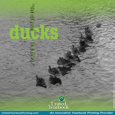 """Get all your ducks in a row!"" This phrase became alive to us as we recently strolled around a lake near our home office and saw ducks neatly lined up in a row.  Contemplating this phrase, we began to declutter the office and our warehouse in preparation for the upcoming school year just around the corner.  Little did we realize the burst of energy and the joyful accomplishment we would gain in the process!  #declutter #educators #konmari #mariekondo #getorganized #classroom #teacher"