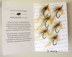 One of my all time Favorite Shrimp that will work throughout the season now being produced by Atlantic Flies, GM Shrimp  By Jerome Molloy