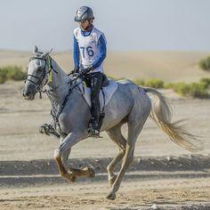 10.25.14 DIEC 100km PHOTO: fazza3_m Salim Al Owaisi salxm