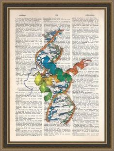 Science DNA illustration printed on a vintage dictionary page. Wall Art, Home Decor. $8
