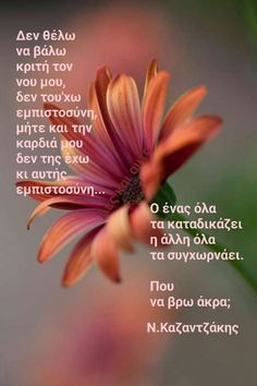 Greek Quotes, Greeks, Pay Attention, Life