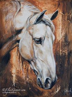 The Secrets Of Drawing Realistic Pencil Portraits - www. white horse art Secrets Of Drawing Realistic Pencil Portraits - Discover The Secrets Of Drawing Realistic Pencil Portraits Horse Drawings, Art Drawings, Arte Equina, Horse Artwork, White Horses, Equine Art, Pencil Portrait, Horse Love, Western Art