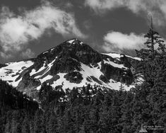 A black and white landscape photograph of Tamanos Mountain at Mount Rainier National Park, Washington. Mount Rainier National Park, Black And White Landscape, Landscape Photographers, Washington State, Pacific Northwest, Sunrise, National Parks, Mountain, Instagram