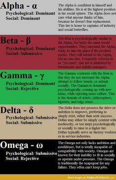 Personality Types - Alpha, Beta, Gamma, Delta, Omega - Think I am a Gamma. Writing Prompts, Writing Tips, Psych Test, Emotion, Self Development, Self Improvement, Self Help, Life Quotes, Knowledge