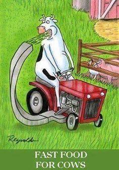 fast food for cows funny cute comics cartoons lol humor funny comic