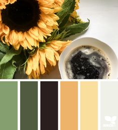 Design Seeds + Color Atlas by Archroma® Warm Color Schemes, Color Schemes Colour Palettes, Fall Color Palette, Color Combos, Colour Trends, Design Seeds, Sunflower Colors, Hue Color, Color Stories