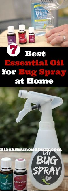 What are essential oils good for pest control? Here are best essential oil for bug spray at home to repel mosquito, spider, and bed bug away from your home