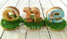 #6 - Beatrix Potter 3-D Cookies by CookiesArtByShirlyn