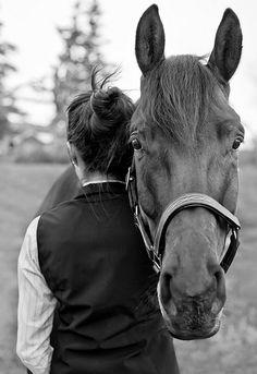 love www.thewarmbloodhorse.com