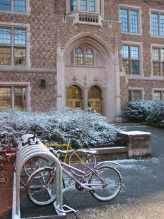 Bikes withstood the snow storm! #youW