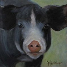 Oil Painting Animal Nellie the Pig Small 6x6 by ChatterBoxArt