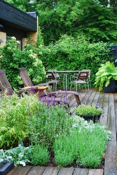 Finest garden decking fire pit ideas made easy Garden Cottage, Lush Garden, Dream Garden, Herb Garden, Garden Landscape Design, Garden Landscaping, Small Gardens, Outdoor Gardens, Exterior