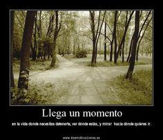 #desmotivaciones
