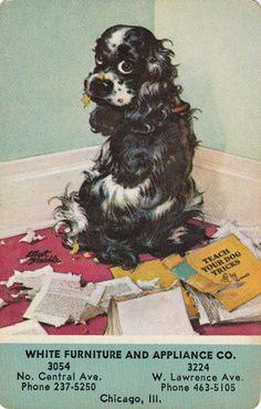 *Vintage Swap / Playing Cards - 1 single - BUTCH DOG ADVERT - WHITE FURNITUR