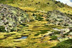 """Parque natural de Peñalara """"el otroMadrid"""""""