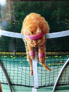 Tennis class !!!