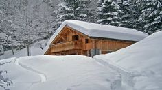 luxury-chalet-in-snow-forest.jpg (1280×720)