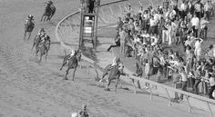 Secretariat Rides Advances in Technology to Preakness Record - NYTimes.com