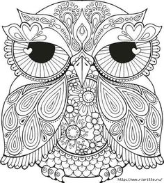 Coloring Pages For Teenage Printable - Free Coloring Sheets Owl Coloring Pages, Printable Coloring Pages, Free Coloring, Coloring Sheets, Coloring Books, Coloring Pages For Grown Ups, Mandala Coloring Pages, Colorful Drawings, Colorful Pictures