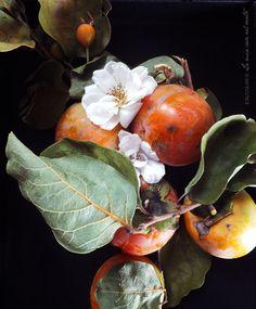 Dolci, dolcissimi, con i colori di un viale d'autunno rivestito di foglie: stiamo parlando dei Cachi. Della famiglia delle Ebenacee, il suo nome botanico Diospyros kaki deriva dal greco:è costitui