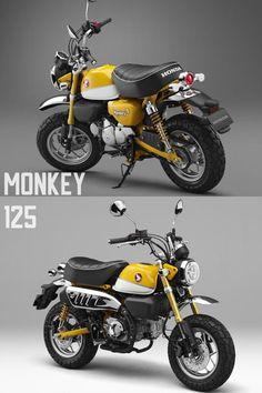 New Honda Monkey 125 Banana Yellow | Front and black | 2018 - 2019