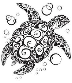Turtle Tattoos in Tribal or Cartoon Styles