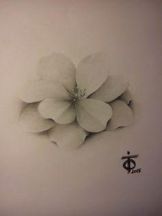 #drawing #disegno #matita #draft #bleistift #zeichnung #pencil #tattooart #tatuaggio #tasteofink #black #white #realistico #realistic #realistisch #foto #flower #lilie