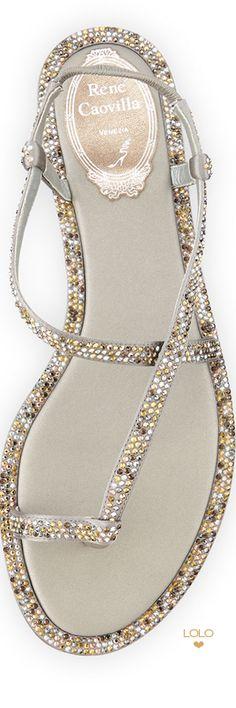Fashion Shoes   ShoeAddict   Rosamaria G Frangini    Rene Caovilla   LOLO❤︎