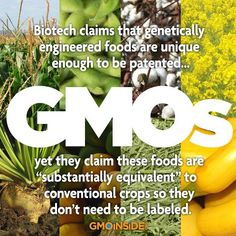 Get more information on GMOs on our website here: http://gmoinside.org/resources