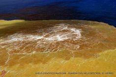 Erupción submarina Canarias 28