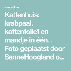 Kattenhuis: krabpaal, kattentoilet en mandje in één. . Foto geplaatst door SanneHoogland op Welke.nl