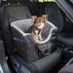 Car Seat for Small Dogs Dog Car Booster Seat, Dog Car Seat Belt, Dog Car Seats, Nylons, Pet Puppy, Pet Dogs, Hamster Bedding, Dog Barrier, Durable Dog Toys